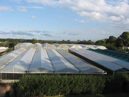 Greenhouses - Multispan up to 7000m2