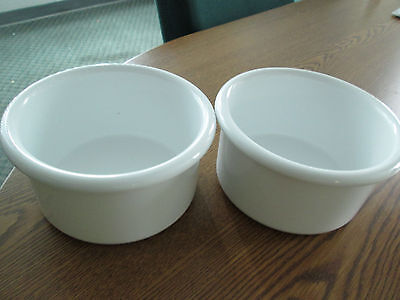 "Crock style bird or pet water/food plastic dish 28"" oz.bowl set of two white"
