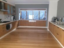 ASTROGIRL PROFESSIONAL CLEANING Scarborough Stirling Area Preview