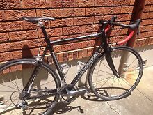 Potenza Rapido road bike, full carbon, full Ultegra, XL size Neutral Bay North Sydney Area Preview