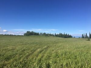 Price Reduced and ready to Sell. Land East of Vanderhoof