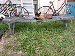 Vintage wood and metal garden seat Joyner Pine Rivers Area Preview