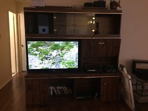 TV Stand *lowered price*