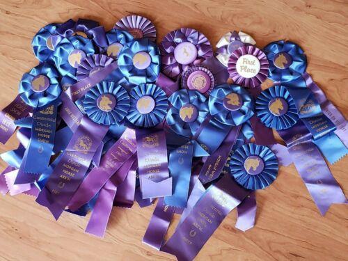 LOT #4 ~ 21 1980s Era Horse Show Ribbons