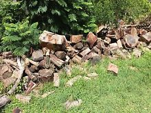 Free firewood! Brightwaters Lake Macquarie Area Preview