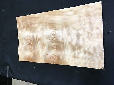 Quilted Burl Maple Raw Wood Veneer Sheets 9.25 X 16.5 Inches 142nd Lot 139