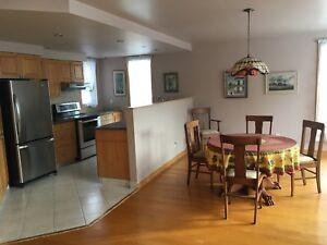 Armoires de cuisine / kitchen cabinets