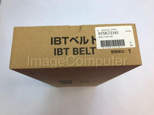 New OEM 675K72181 IBT Transfer Belt Xerox DocuColor 240 242 250 260 700 WC7655