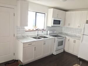 NEWLY RENOVATED BRIGHT 2 BDRM/1 BATH GROUND LEVEL SUITE FOR RENT