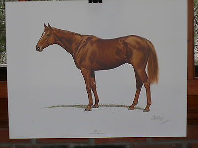$1,000 Limited 197/1000 Edition 1978 Print GUY COHELEACH Race Horse 'AFFIRMED'