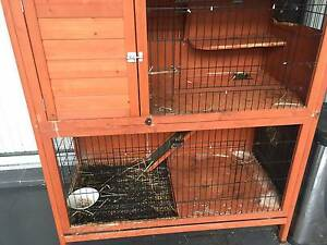 Rabbit Hutch + feed bunny starter kit Penrith Penrith Area Preview