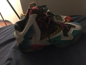 What the lebrons size 10 180 OBO