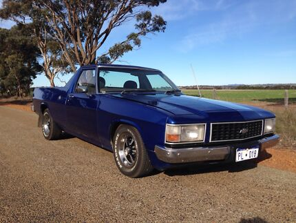 Wb ute injected 304 Kendenup Plantagenet Area Preview
