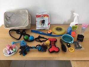 Dog toys Ashmore Gold Coast City Preview