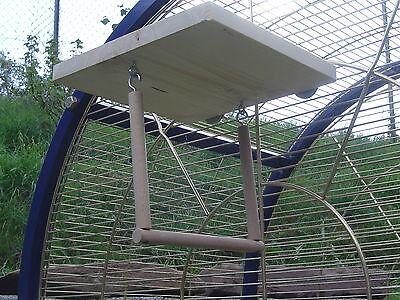pipano Sitzbrett 20 x 20 cm mit Vogelschaukel 12 mm, Wellensittich, SV12