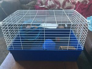 Rabbit or hamster cage
