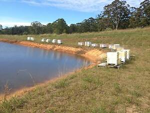 Pollination Services for crops Moonee Beach Coffs Harbour City Preview