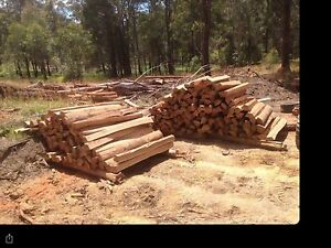 Millable timber Coopernook Greater Taree Area Preview