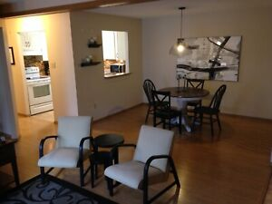 Fully furnished  pet friendly condo/ apartment for rent !
