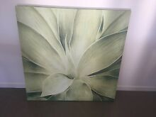 Agave Canvas painting Mountain Creek Maroochydore Area Preview