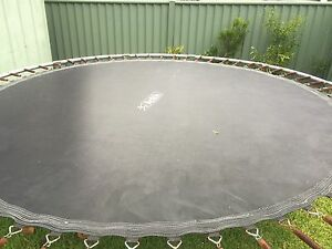 FREE Trampoline Lane Cove Lane Cove Area Preview