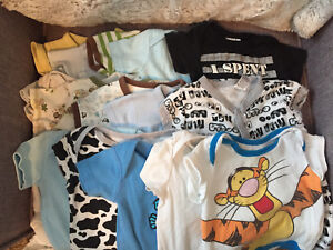 15 Assorted Shirts