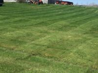 Emerald grass.       lawn care, services and landscaping