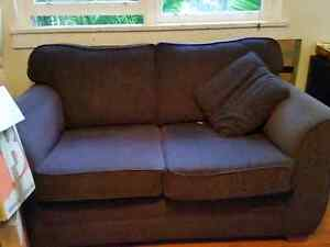 Two two seater couches Ashfield Ashfield Area Preview