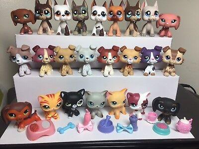 Littlest Pet Shop LPS Great Dane #577 Collie #363 Dog #Cat #391 3 Random +3-Acc.