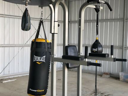 Body Iron Home Boxing Gym With Speed Ball Punching Bags Included