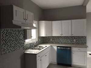 Totally Renovated 2 Bedroom Apartment in Woodstock