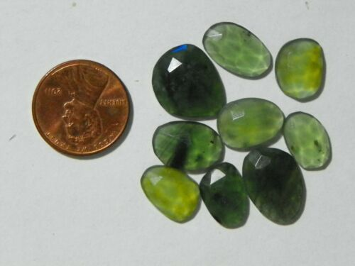 Antigorite 28.92 Carats 9 Checkerboard Faceted Transparent Heavy Natural Flaws