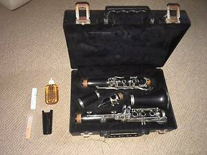 Clarinet- Music & Clarinet Stand, Cleaning Instruments optional Gladstone Gladstone City Preview