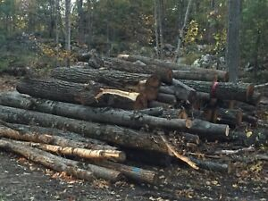 30 Red Oak Hardwood Timbers for sale!