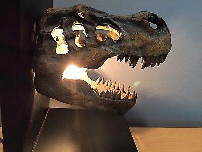 Dinosaur fossil light