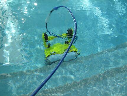 Pool Cleaner Dolphin Gumtree Australia Free Local