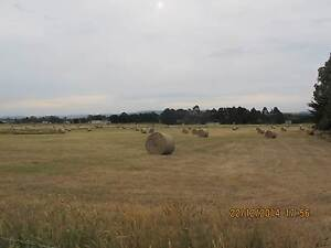 5 x 4 Round Hay Bales for sale Morwell Latrobe Valley Preview