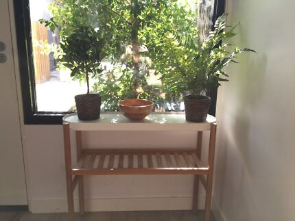 Home plant with pot Other Home Decor Gumtree Australia