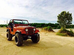 Jeep cj5 v8  304 amc