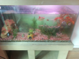 4ft fish tank with fish stand pump lights etc Kelmscott Armadale Area Preview