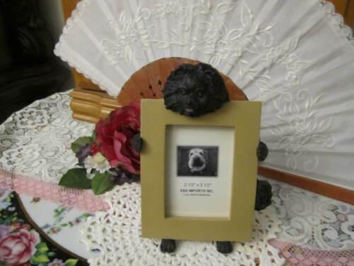 Pomeranian Black Dog Picture Photo Frame