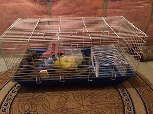 Small rabbit/guinea pig cage for sale