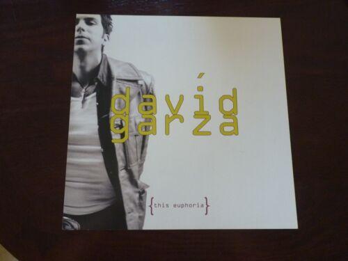 David Garza The Euphoria 1998 Promo LP Record Photo Flat 12x12 Poster