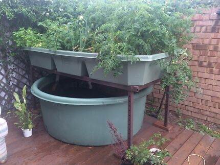 Complete aquaponics system Tuart Hill Stirling Area Preview