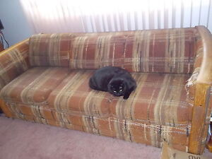 Hidabed couch