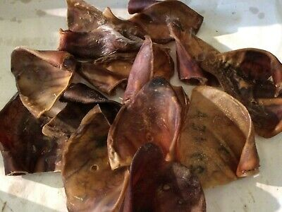 50x IBERIAN THICK/LARGE PIGS EARS.GUARANTEED QUALITY. YUMMY GOURMET PIGS EARS