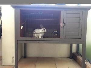 Rabbit and hutch Balmain Leichhardt Area Preview
