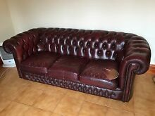 gascoigne 3 seater chesterfield Frewville Burnside Area Preview