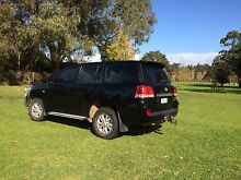 2008 Toyota LandCruiser Wagon Albany Albany Area Preview