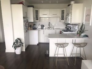 Furnished, Renovated 1 BR apt, in the heart of downtown